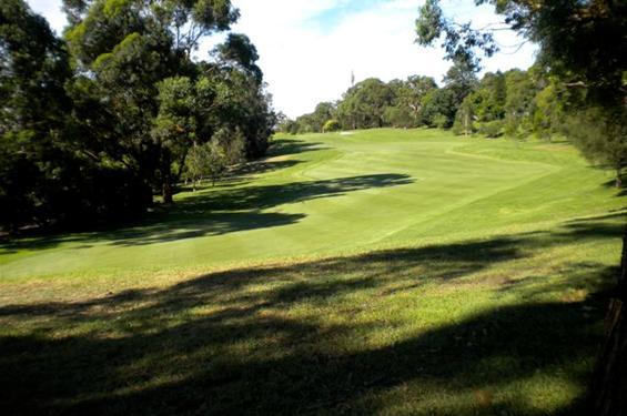 Roseville Course Tour - Hole